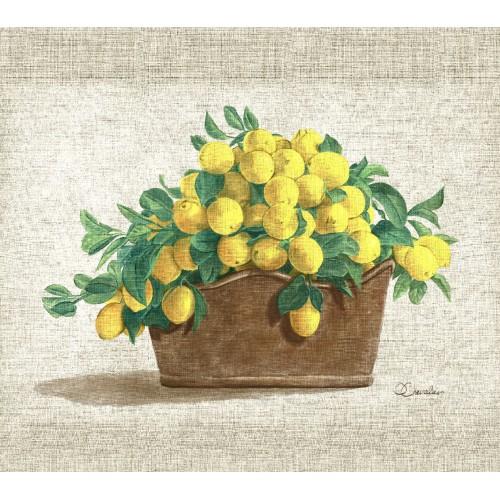 Tenture murale coupe de citrons